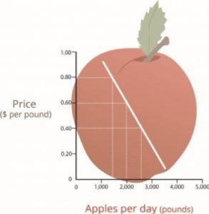 This line graph shows the relationship between price and the demand for apples per day.  As price increases, less apples are purchased each day.