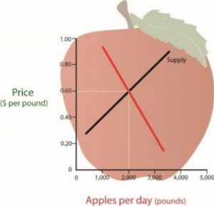 This figure shows the relationship between demand and supply.  The price point at which the demand and supply line intersect is called the equilibrium price.